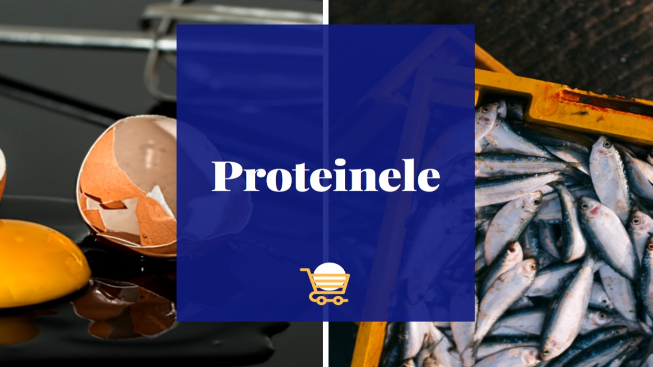 Photo academia_dinceincemaibine_proteinele